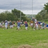 Hurling Training 2