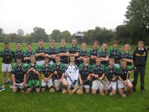 Senior Hurling Team 2012/2013